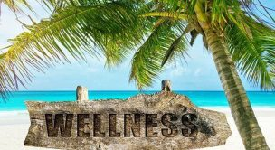 wellness coaching program